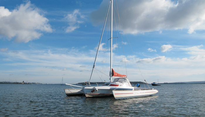 FOR SALE: Dragonfly 800 Swing wing No 274